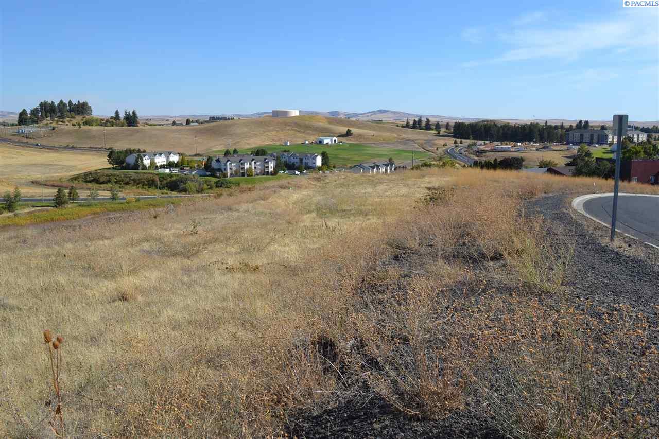 Land / Lots for Sale at Nna NE Merman Drive Nna NE Merman Drive Pullman, Washington 99163 United States