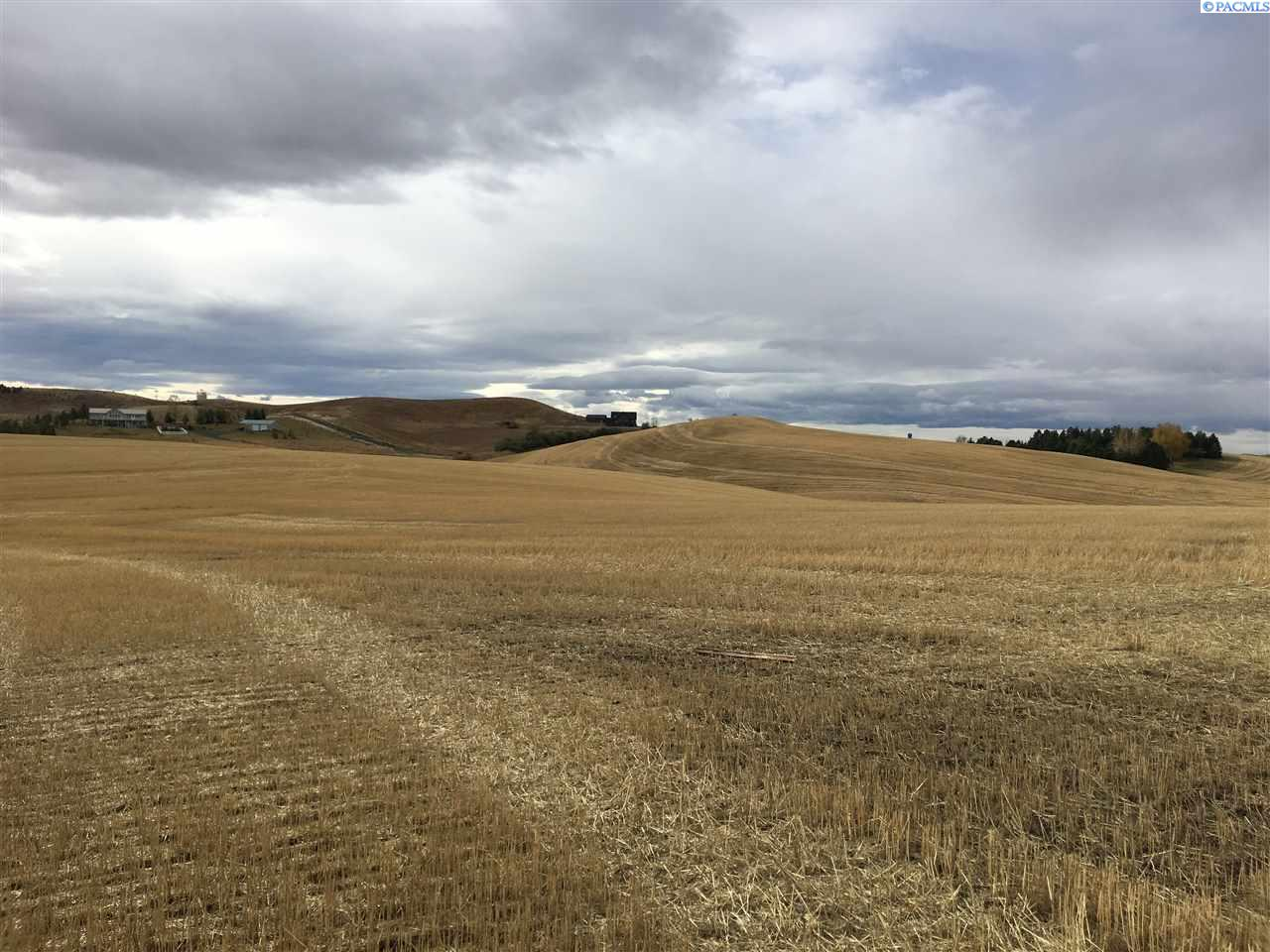 Land / Lots for Sale at Tbd Orville Boyd Road Tbd Orville Boyd Road Pullman, Washington 99163 United States