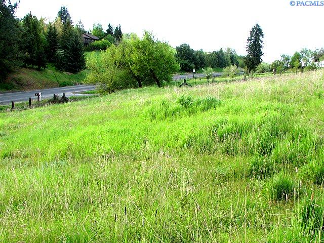 Land / Lots for Sale at Tbd E 8th Street Tbd E 8th Street Palouse, Washington 99161 United States