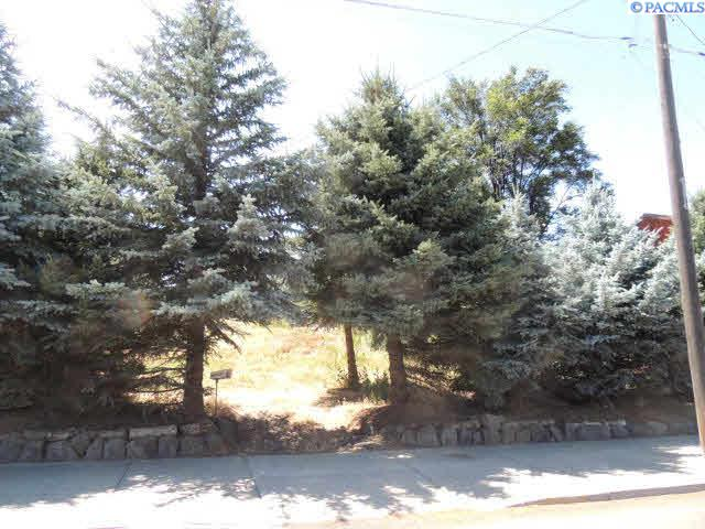 Land / Lots for Sale at 110 S Montgomery 110 S Montgomery Uniontown, Washington 99179 United States
