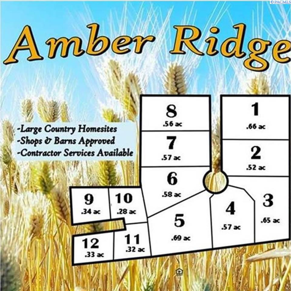 Property For Sale In Amber Pa