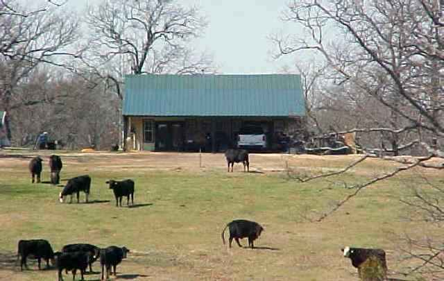 CATTLE RANCH FOR SALE!!! 2bd 1-1/2bth on hill top settin for home to overlook lush meadows, live creek and abundance of wildlife. 60x70 equipment and hay barn with extensive corrals, holding pens, driving cattle lanes. Fenced & cross fenced with solar operated gates. 5 ponds, small lake, excellent property to relax or ranch.