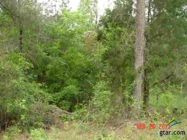 TBD Holly Road 34 acres, Gilmer, TX 75644