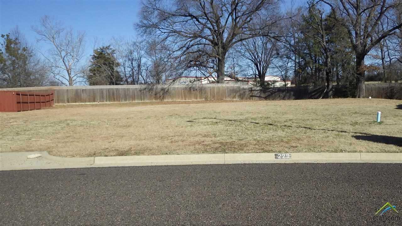 Lot 10 Kathryn, Mt Pleasant, TX 75455