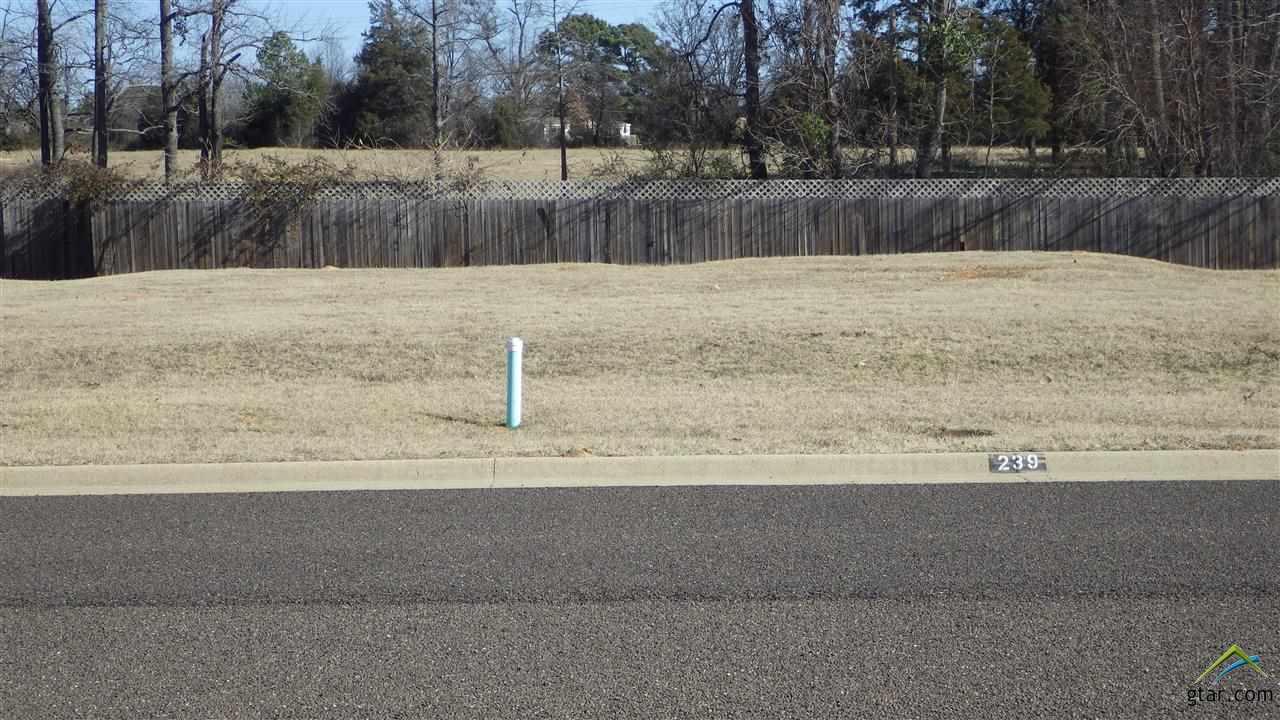 Lot 12 Kathryn, Mt Pleasant, TX 75455