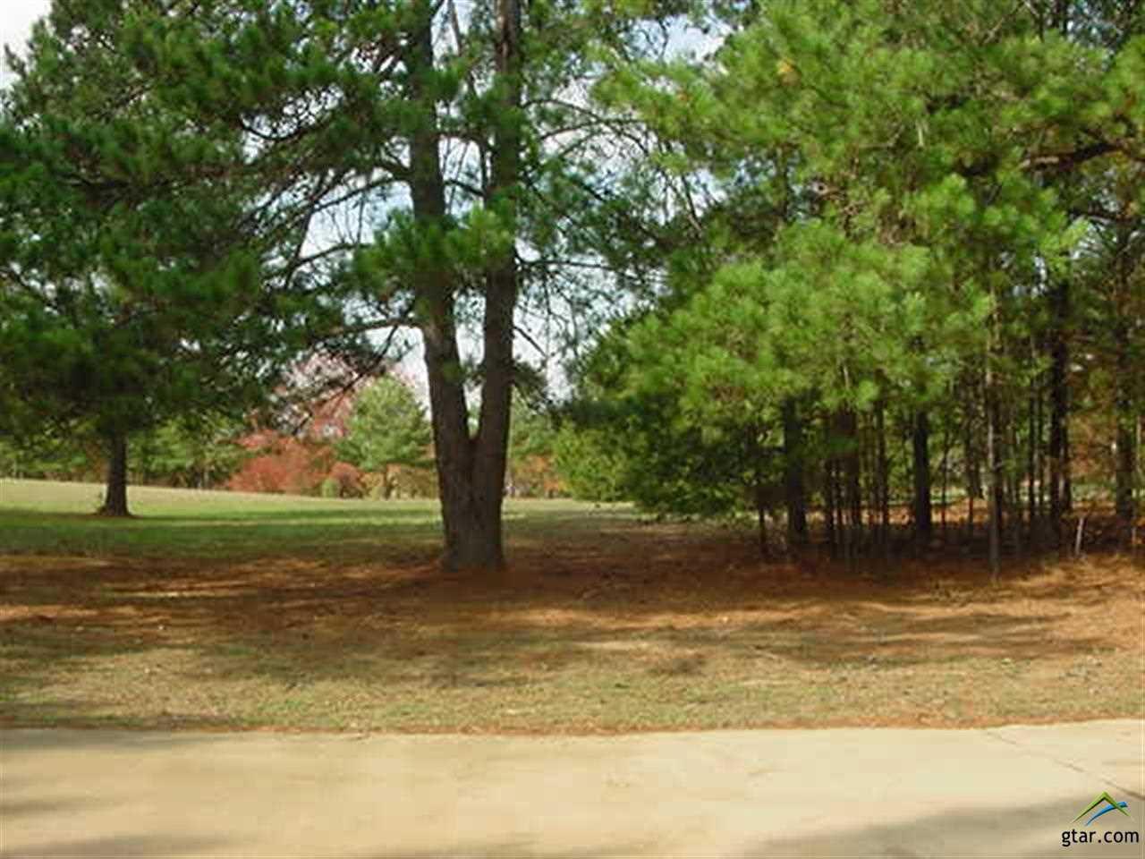 17807 Summerhill Circle, Flint, TX 75762