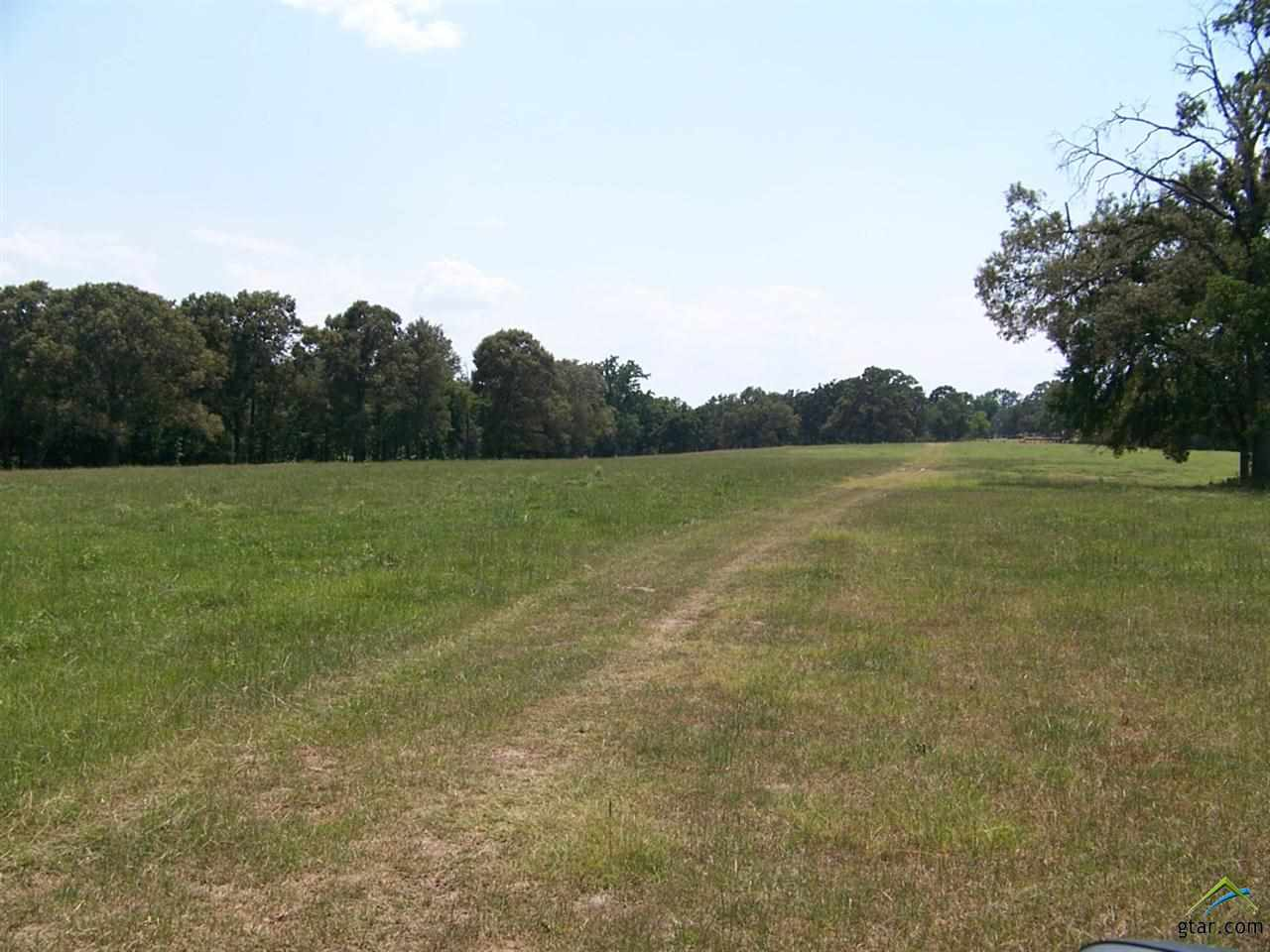 Property for sale at n/a CR 1409, Jacksonville,  TX 75766
