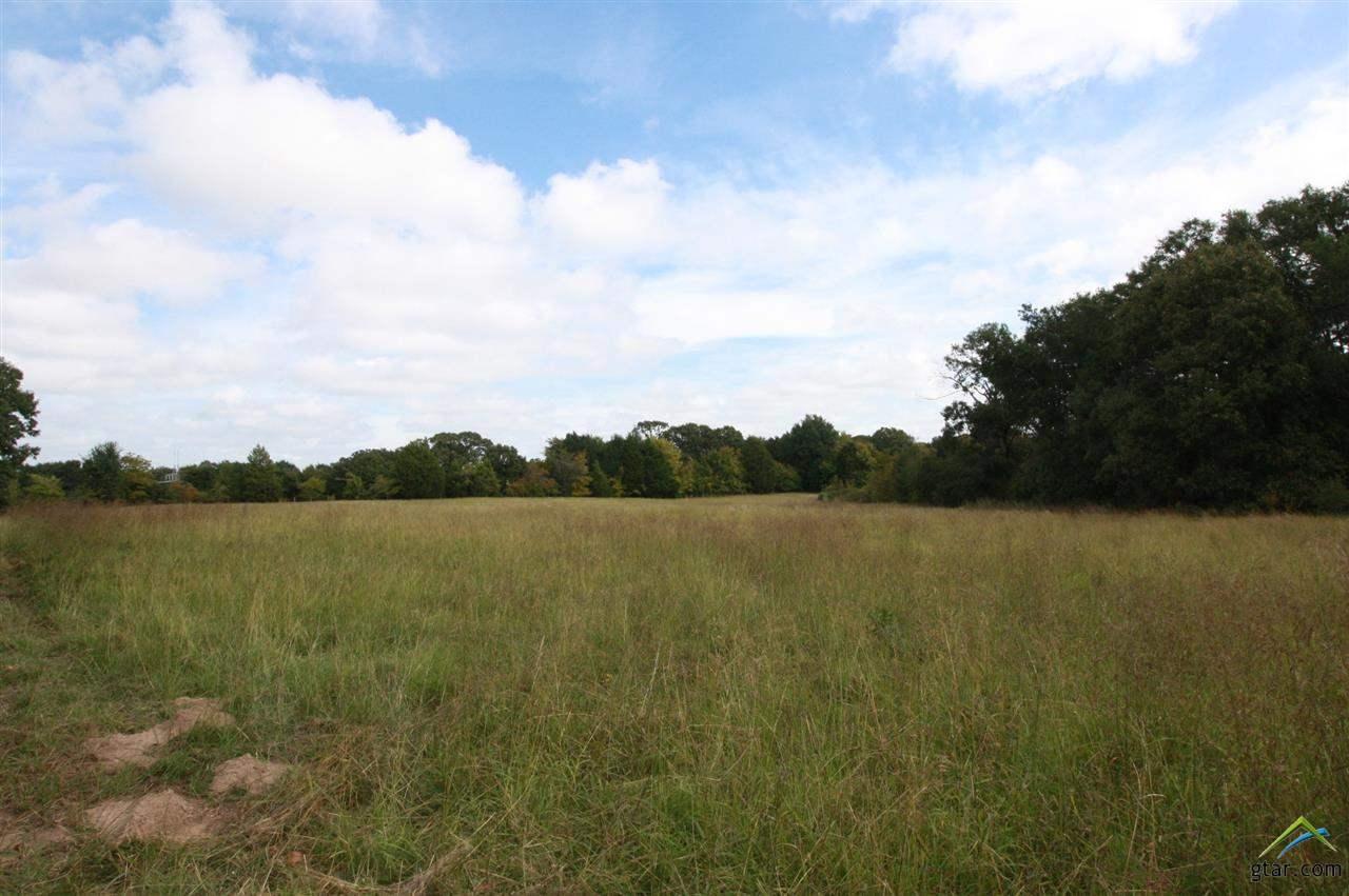 18 Acres Hwy 19, Canton, TX 75103