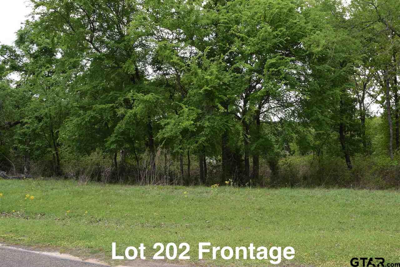 6500 Waters Edge Drive (Lot 202), LaRue, TX 75770