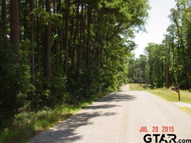 TBD East Lake Drive, Gladewater, TX 75647