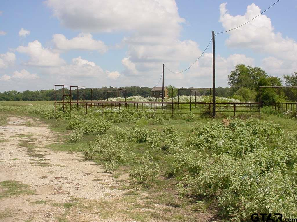 R30486 Rs County Road 1402, Point, TX 75472