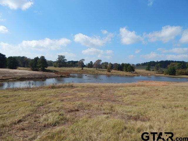 TBD Flamingo, Gilmer, TX 75645