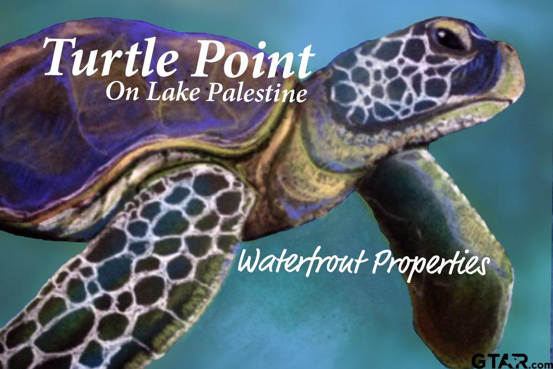 6610 Turtle Point Circle, Frankston, TX 75763