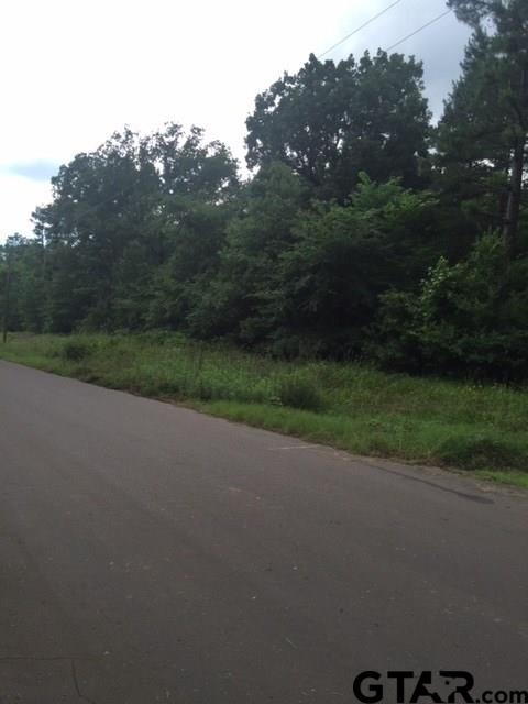Lot 44,46,48 Crestwood Drive, Pittsburg, TX 75686