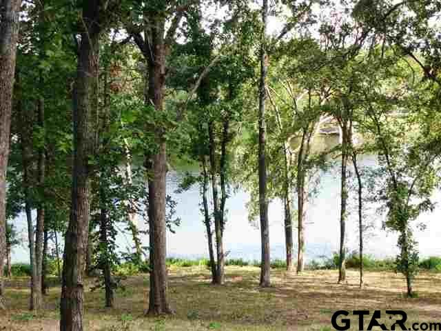 0000 CR 4847 - Lot 3, Winnsboro, TX 75494