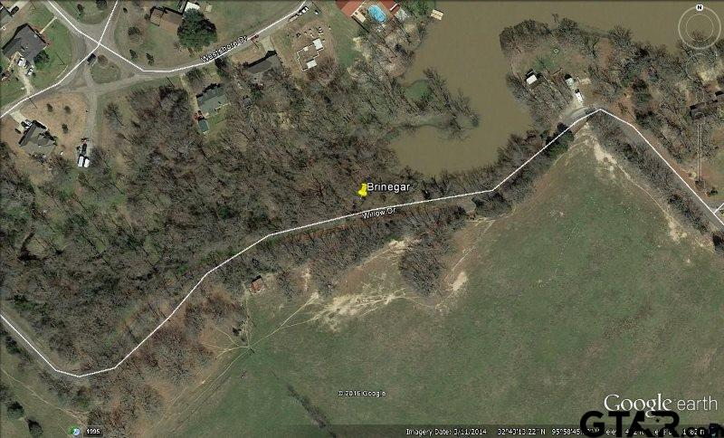 Lot 124 Willow Drive, Wills Point, TX 75169