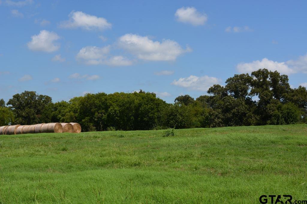 17759 Hwy 11, Winnsboro, TX 75494