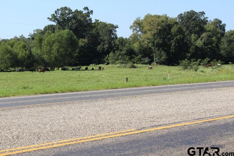 26466 E US HWY 79 E, New Summerfield, TX 75780
