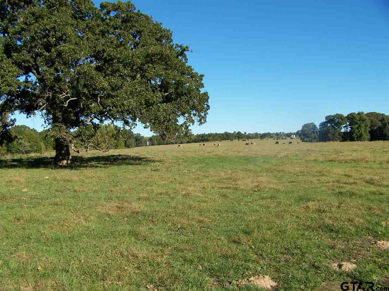 Property for sale at CR 3901, Jacksonville,  TX 75766