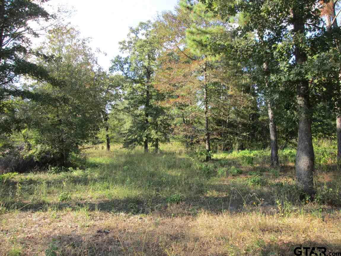 Lot 40 Willow Creek Ranch Rd, Gladewater, TX 75647