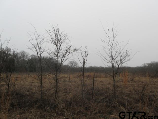 TBD CR 1109, Grand Saline, TX 75140