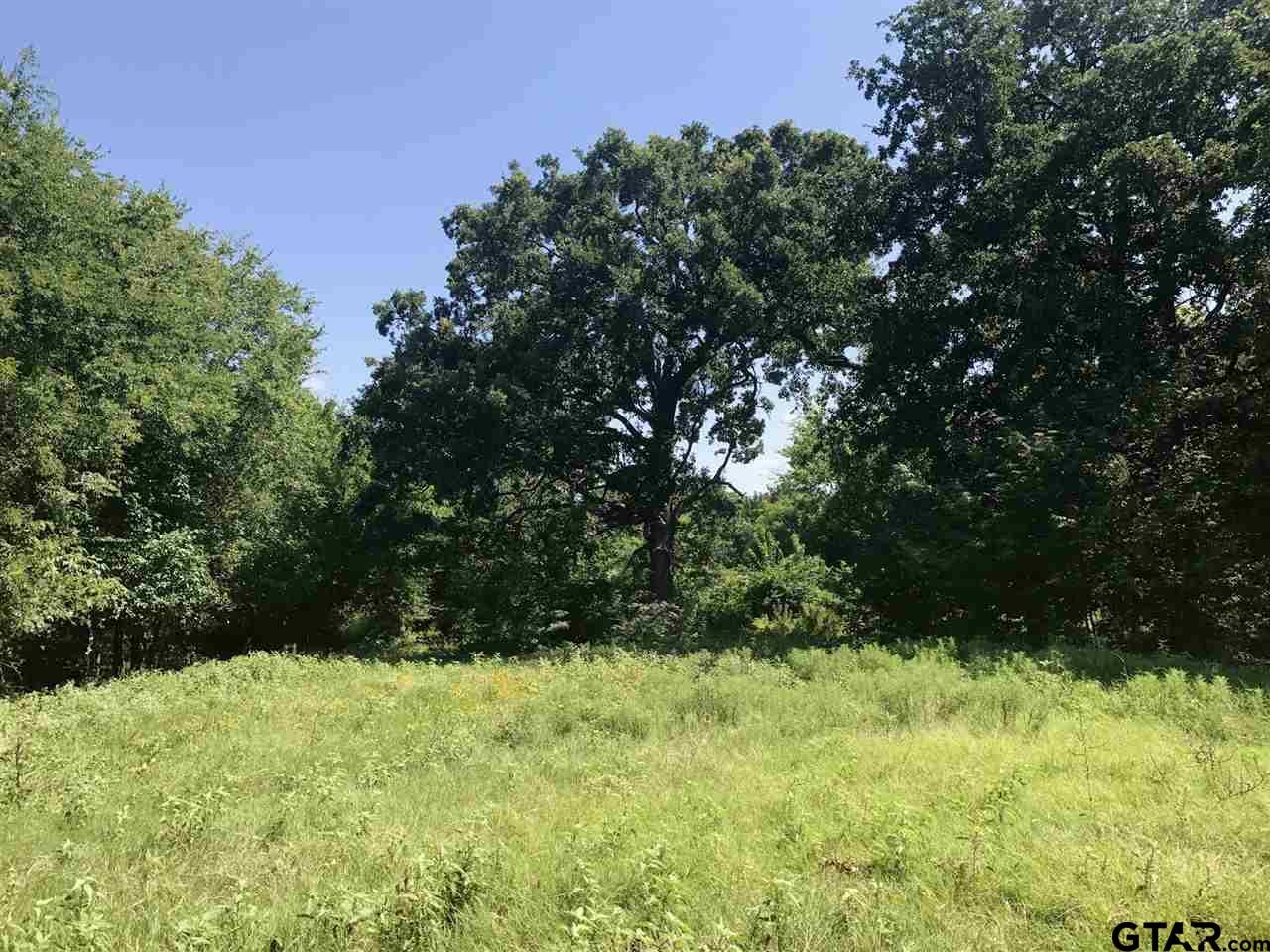 02 Farm Road 69, Dike, TX 75437