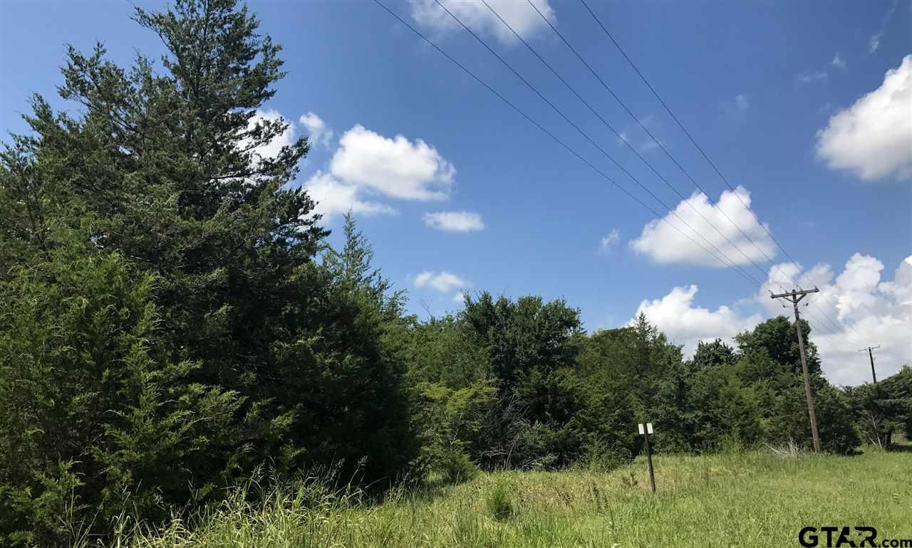 0 Farm Road 69, Dike, TX 75437