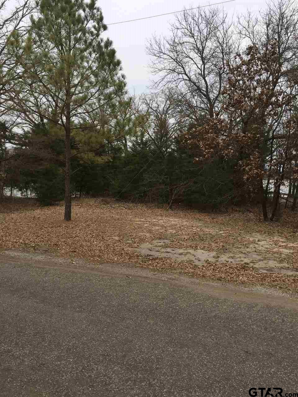 Lot 4 Willow Drive, Wills Point, TX 75169