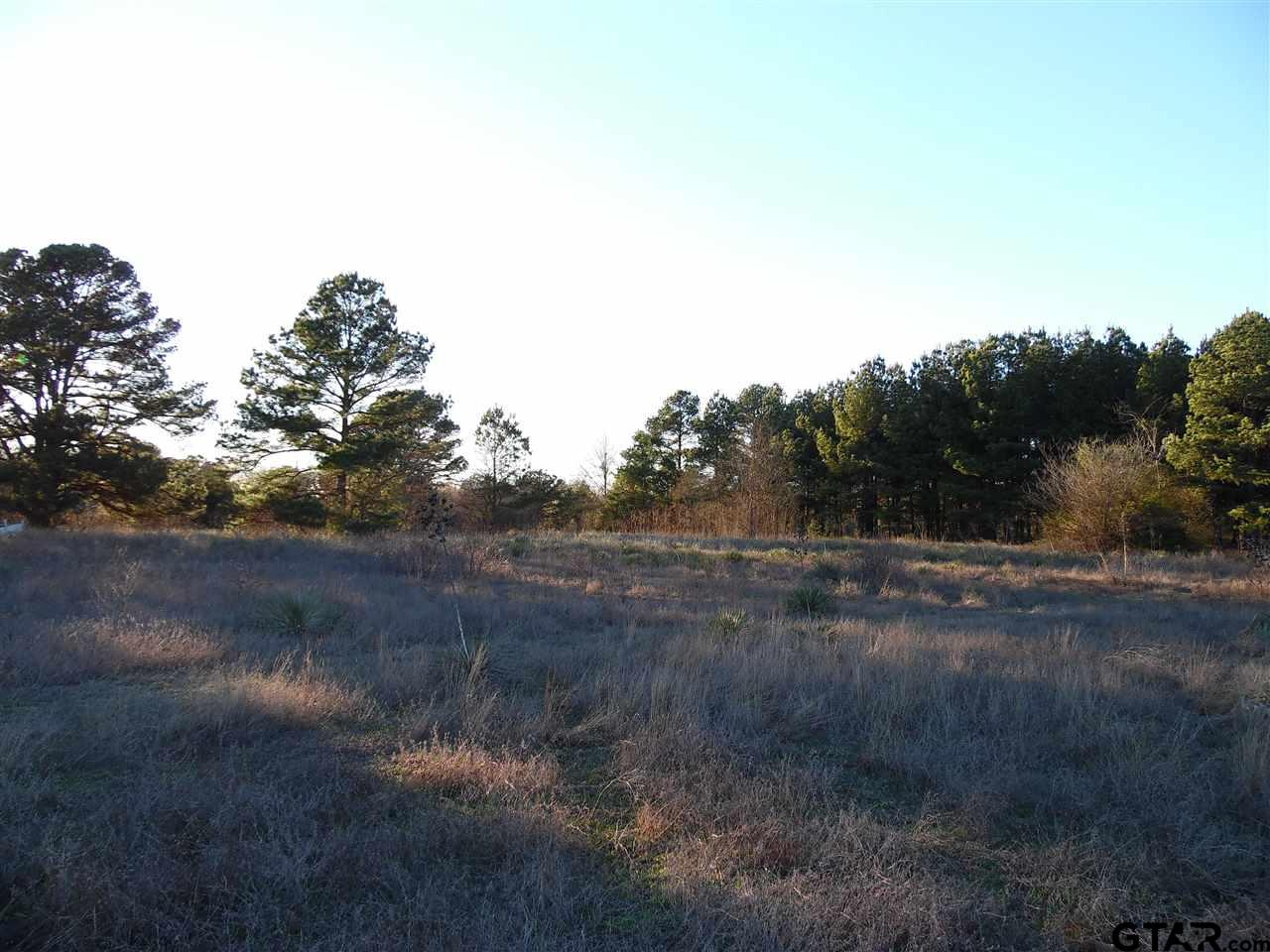 131 Peaceful Acres, Tyler, TX 75706