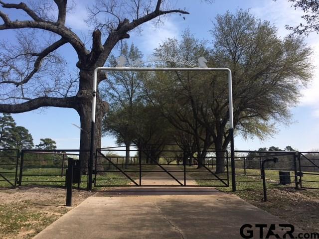 14396 CR 411, Tyler, TX 75706