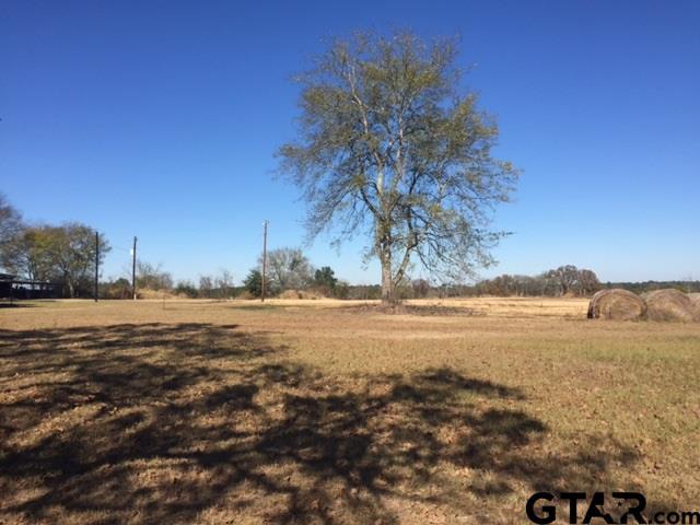 8876 CR 453, Laneville, TX 75667