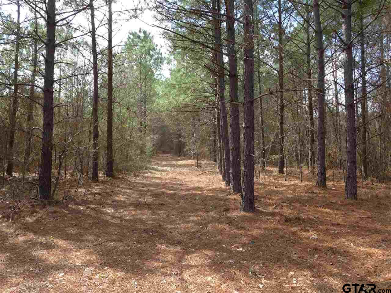 TBD Nutmeg Road, Gilmer, TX 75644