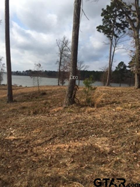 Lot 10 Caddo Point Trails, Scroggins, TX 75480