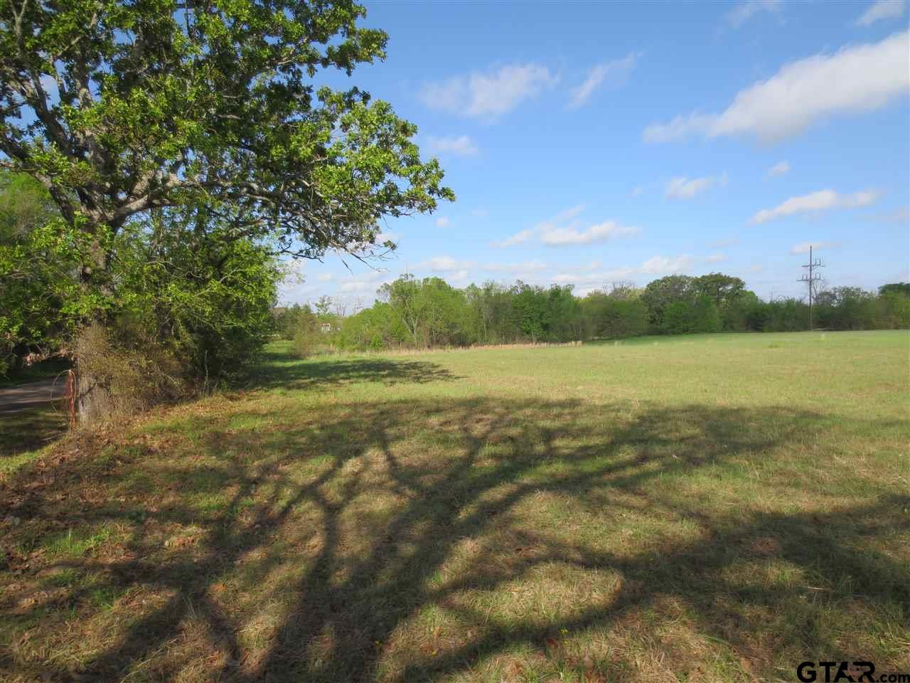 997 N Waldrip, Grand Saline, TX 75140