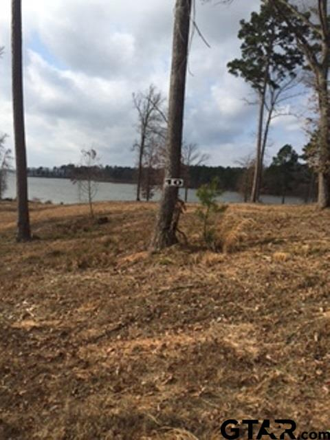 Lot 13 Caddo Point Trails, Scroggins, TX 75480
