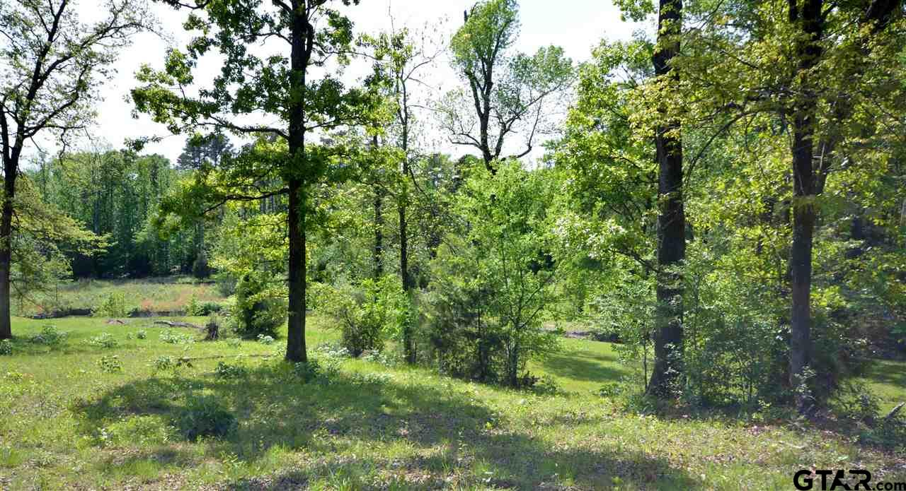 Lot 23 The Oaks - Naus, Winnsboro, TX 75494