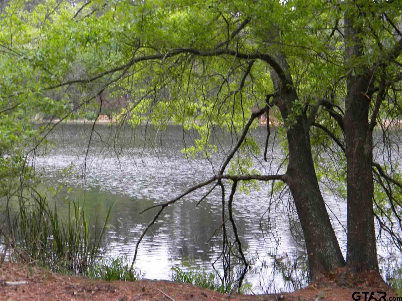 270 Dogwood Trail, Holly Lake Ranch, TX 75765