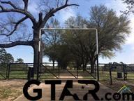 14396 CR411, Tyler, TX 75706