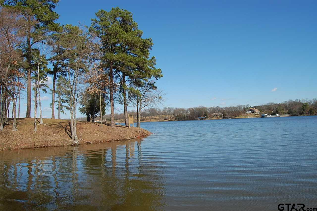 Lot 5 CR 2319, Pittsburg, TX 75686