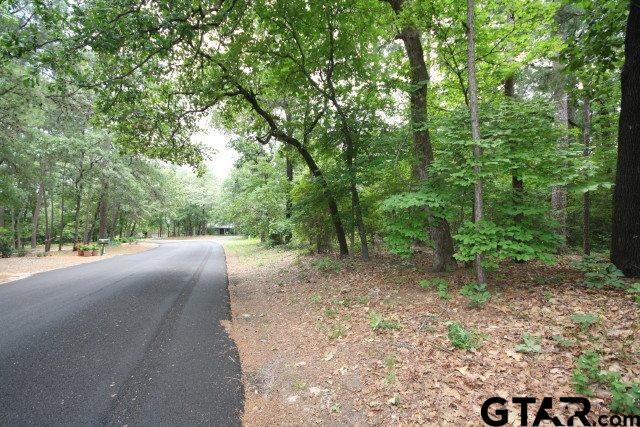 Sec 4 Lot 135 4-135 Green Meadow Trail, Holly Lake Ranch, TX 75765