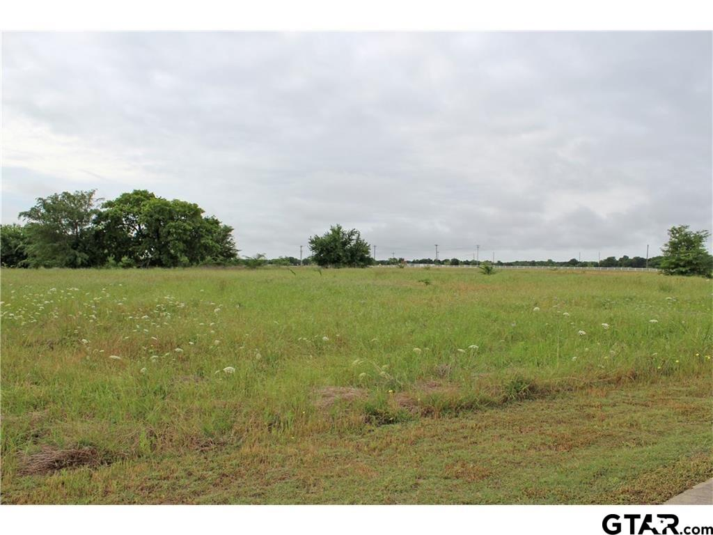 1077 Encino Court, Wills Point, TX 75169
