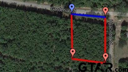 TBD Gardenia Lot 1, Diana, TX 75640