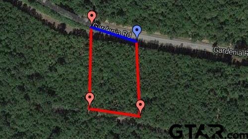 TBD Gardenia Lot 5, Diana, TX 75640