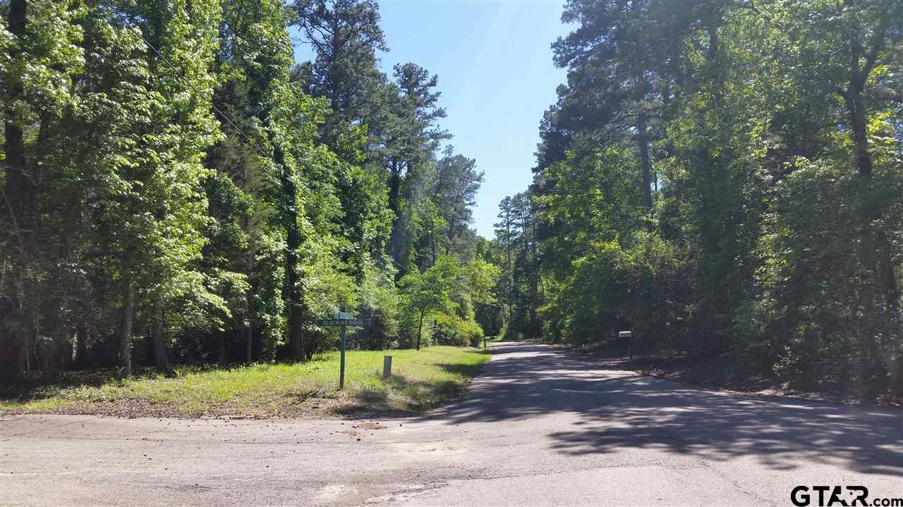 Sec 6 Lot 125 Bluewing Ridge - Valleywood Trail, Holly Lake Ranch, TX 75765