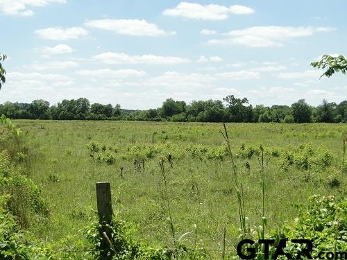 TBD CR 153, Carthage, TX 75633