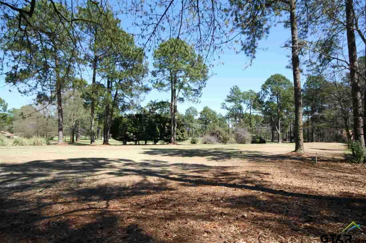 Sec 4 Lot 273 Holly Trail East, Holly Lake Ranch, TX 75765