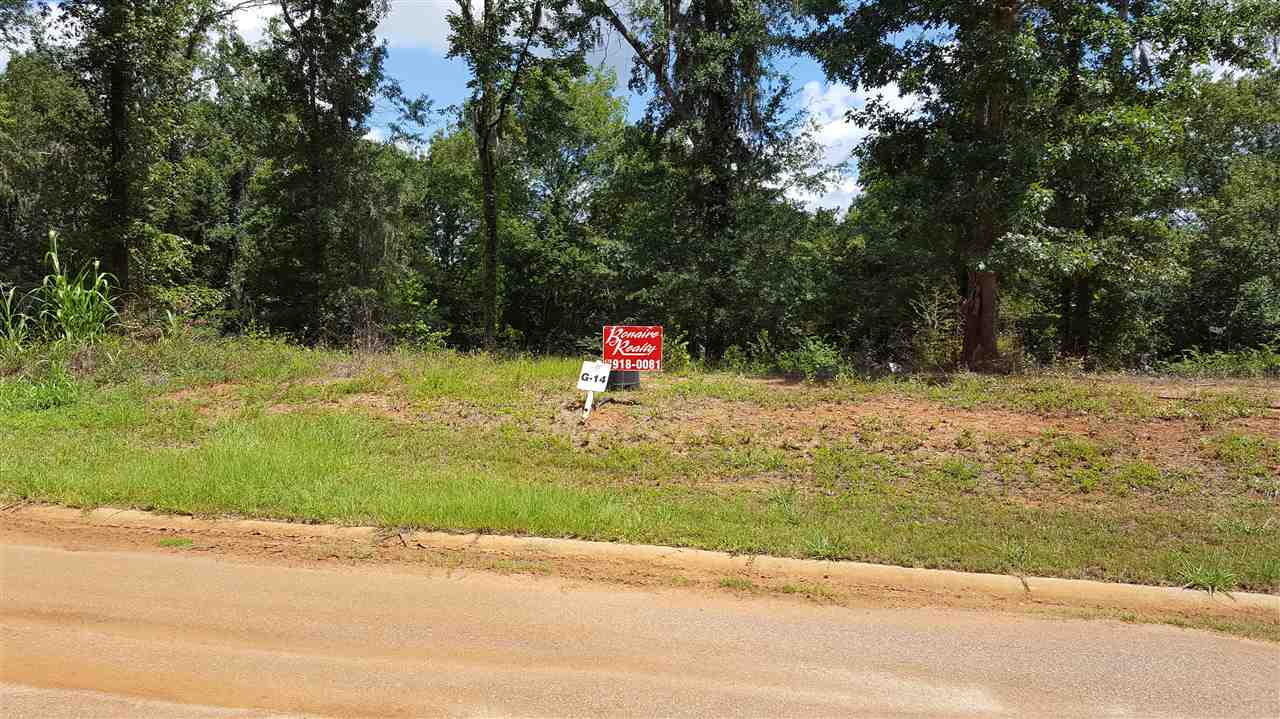 Lot 14 Golfers Lane, Hawkinsville, GA