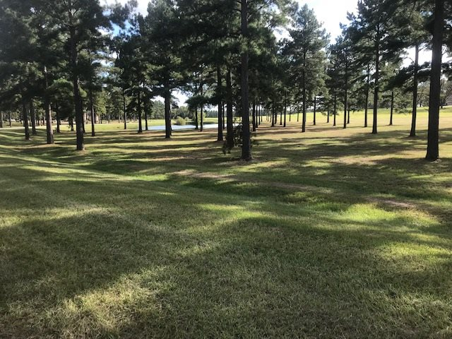 Lot 45 Broken Arrow Trail, Perry, GA 31008