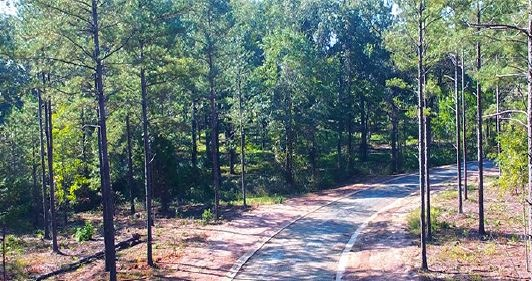 Lot 8 The Farm - Phase 2 , Perry, GA 31069