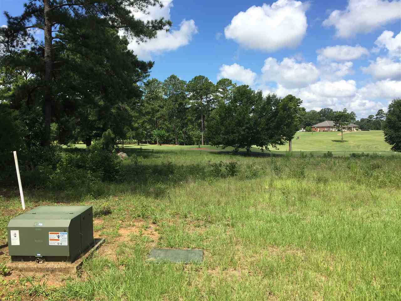 Lot 61 River Ridge , Hawkinsville, GA 31036